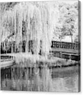 Reflections Of The Landscape Canvas Print