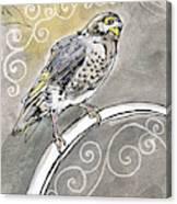 2018 Septembird 16 Myna Bird Canvas Print