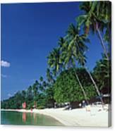 Palm Trees At Sandy Chaweng Beach Canvas Print