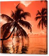 Palm Trees At Sunset, Moorea, Tahiti Canvas Print