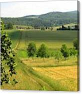 Photograph Of A Field In Germany Canvas Print