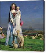 Pretty Baa-lambs Canvas Print