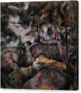 Rocks In The Forest  Canvas Print