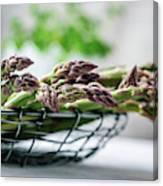 Fresh Green Asparagus Canvas Print