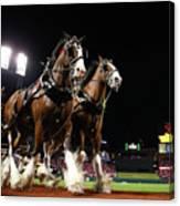World Series - Boston Red Sox V St Canvas Print