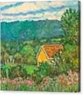 460 Canvas Print
