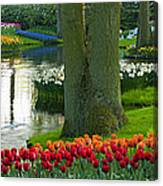 Spring Flowers In A Park Canvas Print