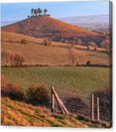 Colmers Hill - England Canvas Print