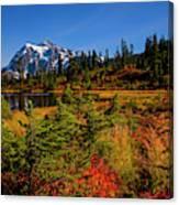 Autumn Colors With Mount Shuksan Canvas Print