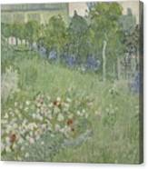 Daubignys Garden  Canvas Print