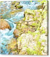 Pocono Mountain Stream, Pennsylvania Canvas Print
