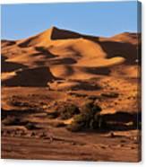 A Caravan In The Desert Canvas Print