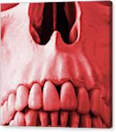 A Close Up Of A Human Skull In Red Canvas Print