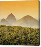 A Glowing Afternoon Canvas Print