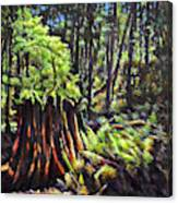 A Showcase In Forest Canvas Print