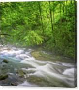 A Springtime Stream Canvas Print