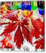 Abstract Fall Acer Stained Glass  Canvas Print