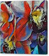 Abstract Orchids.  Canvas Print