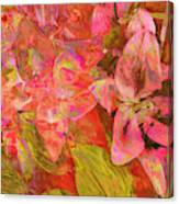 Abstract Pink Lilies Canvas Print