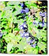 Abstract Summer Garden Canvas Print