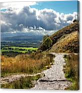 After The Rain On The Trail Canvas Print