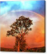 After The Storm, California Foothills                        Canvas Print