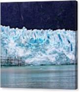 Alaskan Glacier Canvas Print
