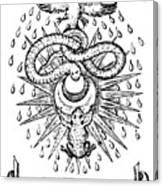 Alchemical Symbolism, 1652 Canvas Print