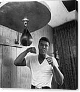 Ali In Training Canvas Print