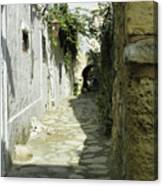 alley in Hammamet, Tunisia Canvas Print