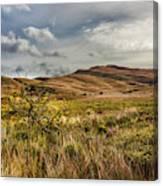 Along The Scottish Highlands Canvas Print