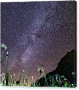 Alpine Milky Way Canvas Print
