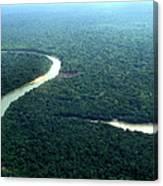 Amazon Planet Canvas Print