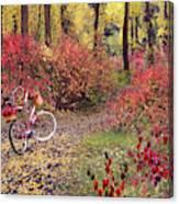 An Autumn Bike Trek Canvas Print