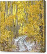 An Autumn Path Canvas Print