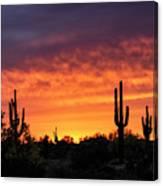 An Orange Glow Fills The Desert  Canvas Print