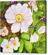 Anemones Birthday Card Canvas Print