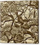 Angel Oak Drama In Vintage Sepia Canvas Print