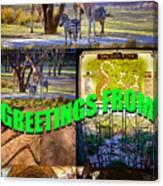 Animal Kingdom Custom Greeting Card Canvas Print