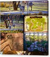Animal Kingdom Lodge Poster A Canvas Print
