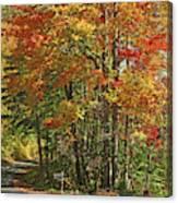 Appalachian Backroads Canvas Print