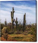 Arizona Dreaming Canvas Print