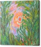 Around The Sun Canvas Print