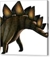Artwork Of A Stegosaurus Dinosaur Canvas Print