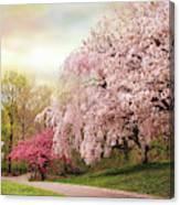 Asian Cherry Grove Canvas Print
