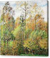 Automne, Peupliers, Eragny - Digital Remastered Edition Canvas Print