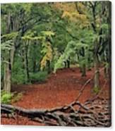 Autumn Blanket Canvas Print