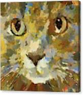 Autumn Cat Canvas Print