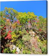 Autumn Color On Newfound Gap Road In Smoky Mountains National Park Canvas Print