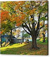 Autumn Day In The Salem Willows Salem Ma Red Canvas Print